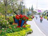Festival hoa Đà Lạt 2019 : Địa điểm du lịch cho những ngày cuối năm